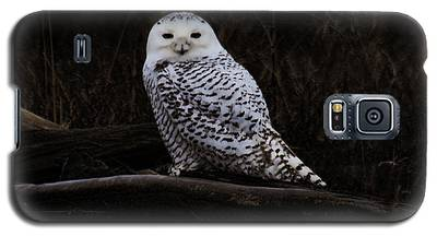 Snowy Owl Two Galaxy S5 Case