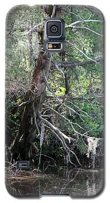 Swamp Tree Galaxy S5 Case