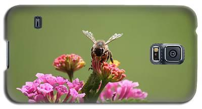 Sweet Nectar Galaxy S5 Case