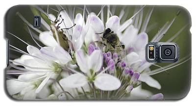 The Beetle And The Bee Galaxy S5 Case