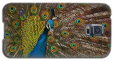 Turquoise And Gold Wonder Galaxy S5 Case