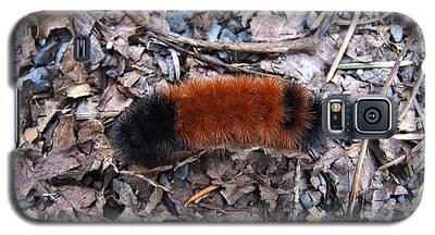Wooly Bear Caterpillar Galaxy S5 Case