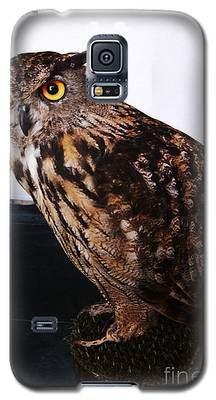 Yellow-eyed Owl Side Galaxy S5 Case