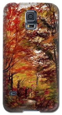 Long And Winding Road Galaxy S5 Case