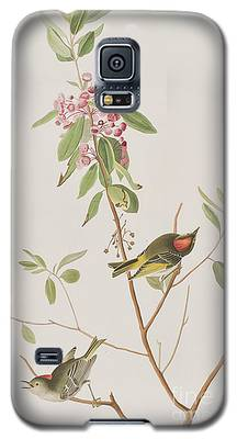 Wren Galaxy S5 Cases