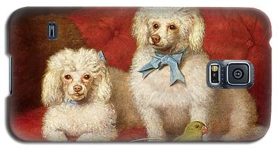 Poodle Galaxy S5 Cases
