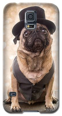 Pug Galaxy S5 Cases