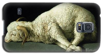 Sheep Galaxy S5 Cases