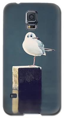 Am I Alone Galaxy S5 Case