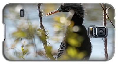 Anhinga 3 March 2018 Galaxy S5 Case