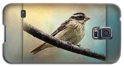 Wisconsin Songbird Galaxy S5 Case