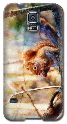 Red Squirrel With Pinecone Galaxy S5 Case