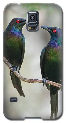 Starlings Galaxy S5 Cases