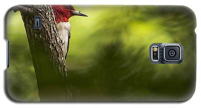 Beauty In The Woods Galaxy S5 Case