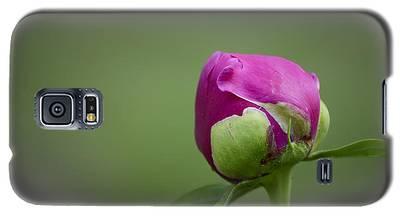 Simple Beginnings Galaxy S5 Case