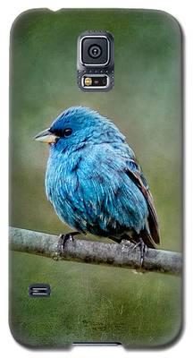Bird In Blue Indigo Bunting Ginkelmier Inspired Galaxy S5 Case