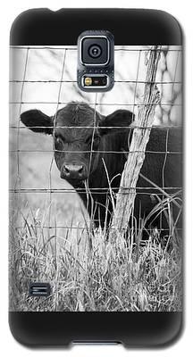 Black Angus Calf Galaxy S5 Case