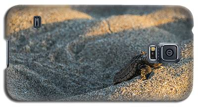 Brave Beginnings Sea Turtle Hatchling Delray Beach Florida Galaxy S5 Case