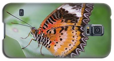 Butterfly On The Edge Of Leaf Galaxy S5 Case