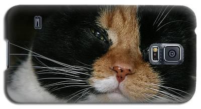 Cal-2 Galaxy S5 Case