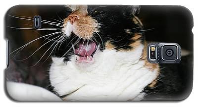 Cal-3 Galaxy S5 Case