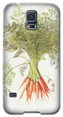 Carrot Galaxy S5 Cases