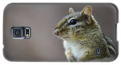 Chipmunk Profile Galaxy S5 Case