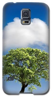 Tree Galaxy S5 Cases