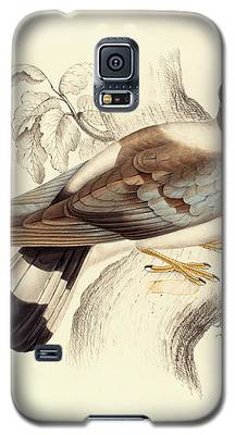 Pigeon Galaxy S5 Cases