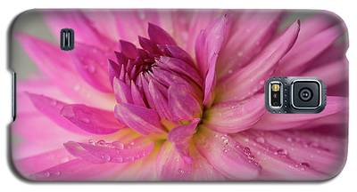 Dahlia After The Rain Galaxy S5 Case