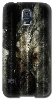 Decay Galaxy S5 Case