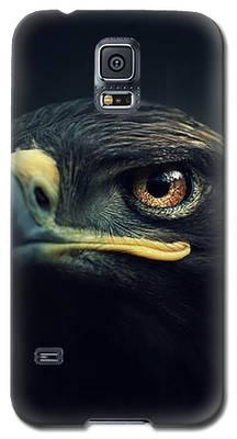Birds Eye Galaxy S5 Cases
