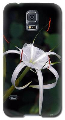 En Pointe Galaxy S5 Case