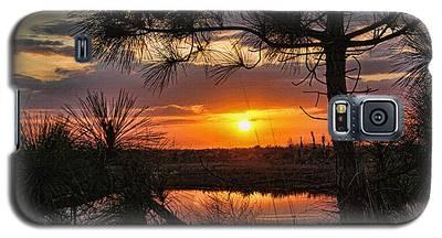 Florida Pine Sunset Galaxy S5 Case
