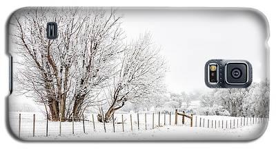 Frosty Winter Scene Galaxy S5 Case
