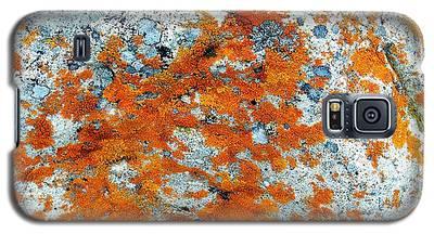 Golden Lichen Galaxy S5 Case