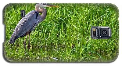 Great Blue Heron Waiting Galaxy S5 Case