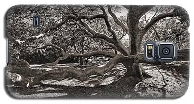Gumbo Limbo Galaxy S5 Case