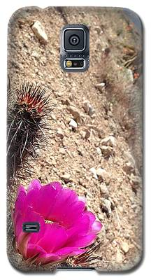Hillside Raspberry Galaxy S5 Case