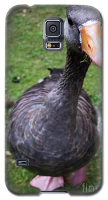 Hyde Park Goose Galaxy S5 Case