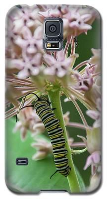 Inp-3 Galaxy S5 Case