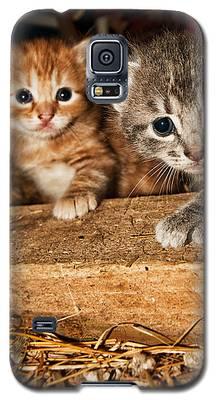 Kittens Galaxy S5 Case