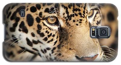 Leopard Face Galaxy S5 Case