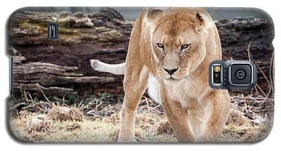 Lion Eyes Galaxy S5 Case