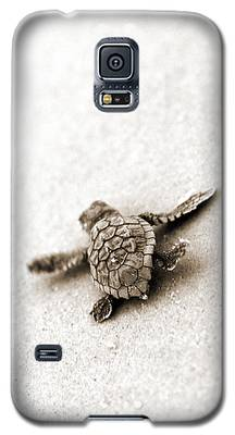 Turtle Galaxy S5 Cases