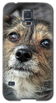 Maggie Galaxy S5 Case