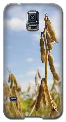 Maturing Soybeans Galaxy S5 Case
