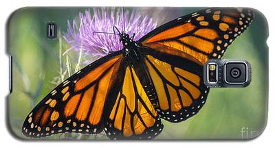Monarch's Beauty Galaxy S5 Case