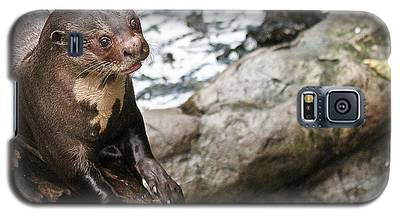 Otter Surprise Galaxy S5 Case