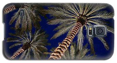 Palm Trees Wrapped In Lights Galaxy S5 Case